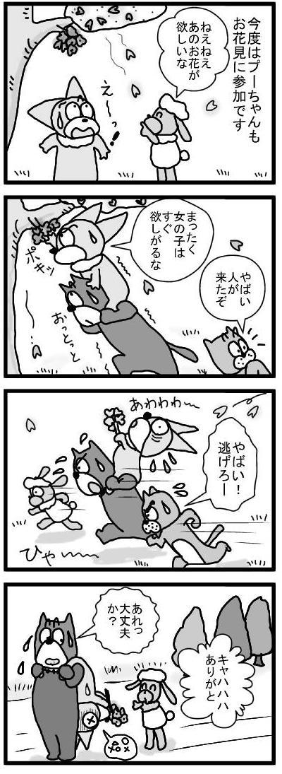 488 プーちゃんと桜 ブログ用