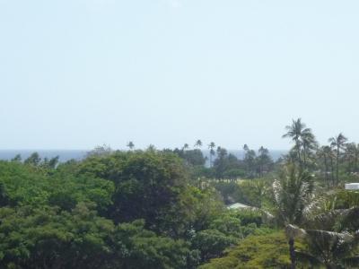 Hawaii+053_convert_20120408132208.jpg