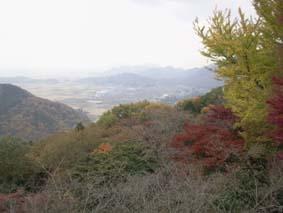 太平山紅葉2
