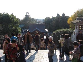 鶴岡八幡宮-2