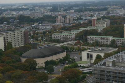 20091017_4.jpg