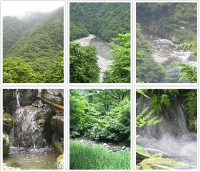 道志村の水1
