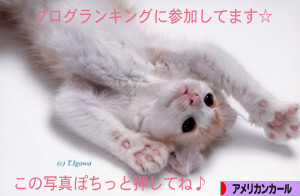 091029pochi.jpg