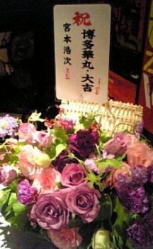 091105博多大吉さんからのお花_宮本浩次ライブ