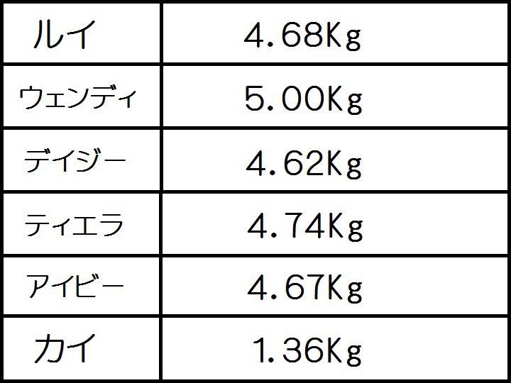 にゃろめっ体重測定メンバー20110608