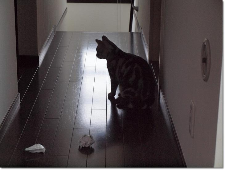 1wendyasobanai20110919 (1)