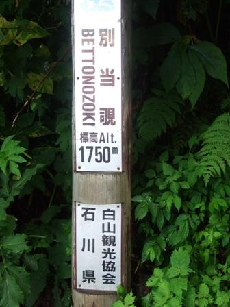 2011_08_14 (11)