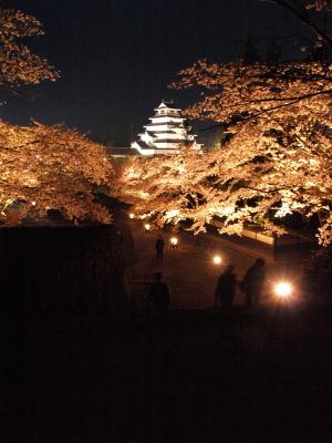 鶴ヶ城の夜桜見物