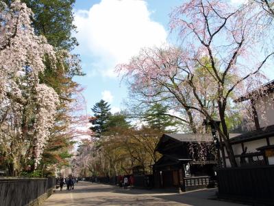 しだれ桜と武家屋敷@角館
