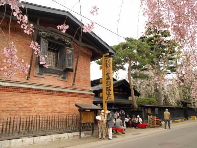 しだれ桜と安藤醸造本店