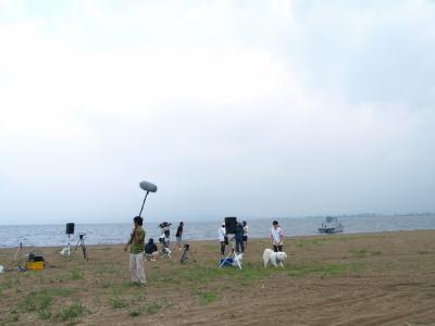 ZIPPEI@天神浜オートキャンプ場