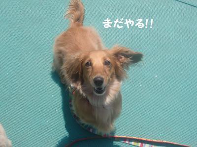投げて投げて!!
