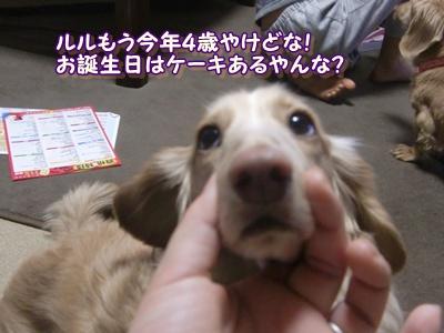 健太をよろしこ!!