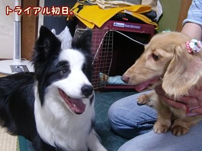 レオ先輩!!