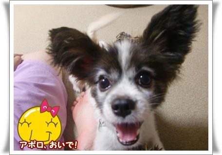 最高の笑顔で!