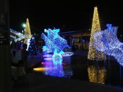 2011.12.6鹿児島9