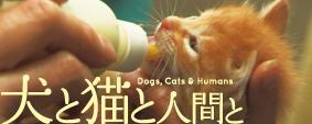 映画「犬と猫と人間と」 オフィシャルサイト