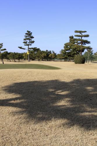 IMG_2067ゴルフ13①