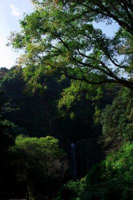 鹿目の滝_03
