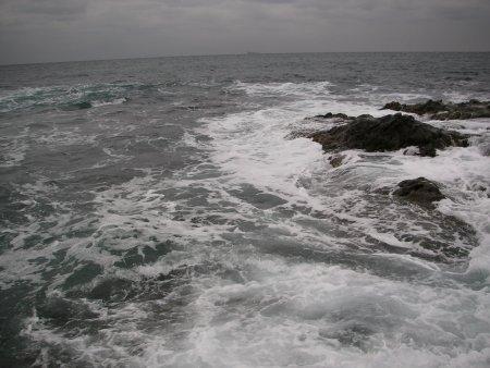 20100212_bousou.jpg