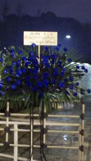 武道館お花1
