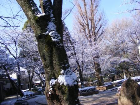 My Kazoku 09,3 1512