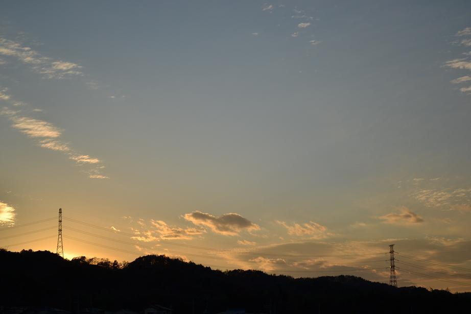 14_20111216211959.jpg