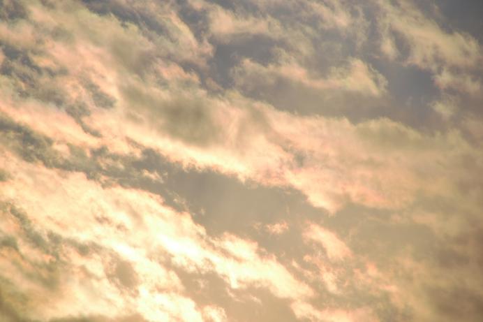 4_20120220011656.jpg