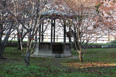 丸亀城井戸