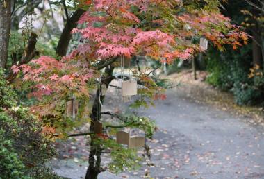 神谷神社11