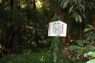 神谷神社10