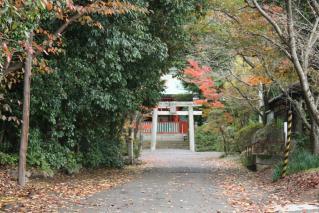 神谷神社13