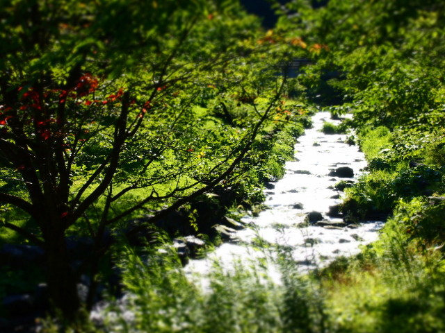 takino-park2_06t.jpg