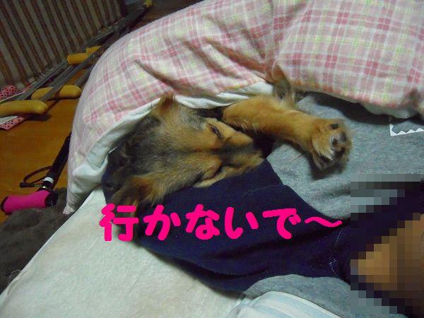 愛&ク~☆ 043
