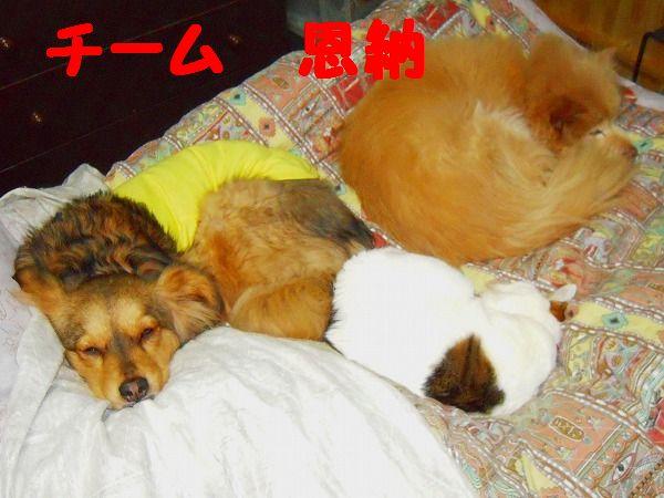 寝姿 004 - コピー