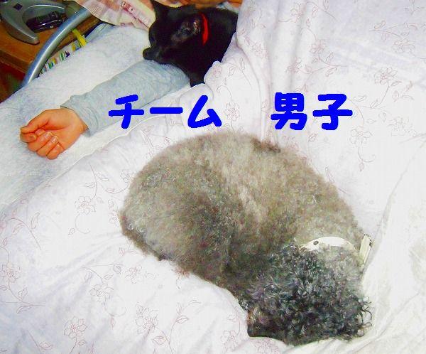 寝姿 005 - コピー