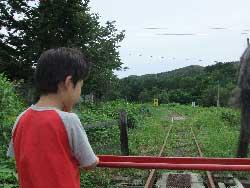 toroko231.jpg