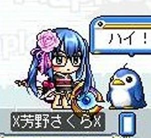 Maple091207_021921.jpg
