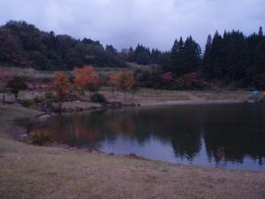 091018杜々の森前の池