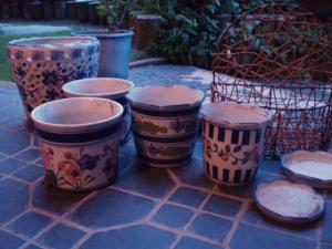 20110617陶器の植木鉢