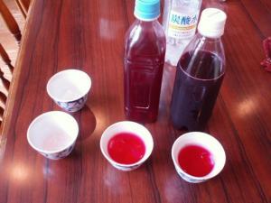 20110719赤シソジュース試飲会