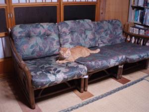 20110801アジアン家具