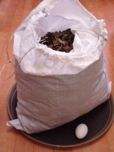 20110818手作りの番茶2