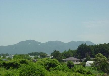 ジャパンカップの山