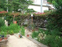 s-DSCF5901.jpg