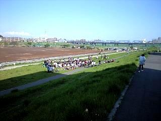 多摩川河川敷(その1)