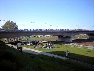 多摩川河川敷(その2)