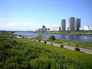 多摩川河川敷(その5)