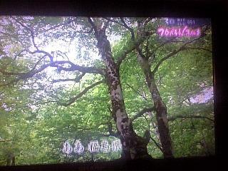 福島県民歌(その2)