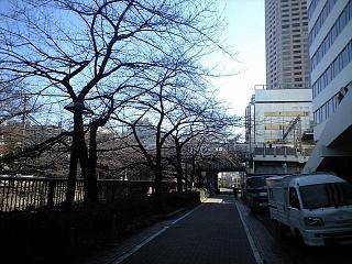 散歩(中目黒その2)